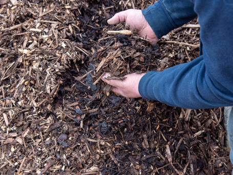 Decorative Bark - Time To Get The Garden Ready With DD Aggregates