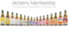 Aurora Alchemy Wix Membership.png