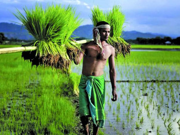 What farm reform in India has to do with China
