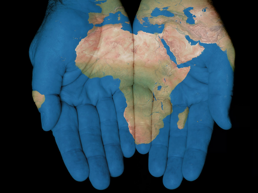 The Idiosyncrasies of Economy: How African Countries can become a Beehive of Investments