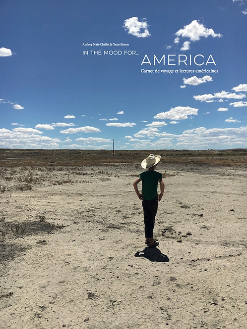 In the mood for… America