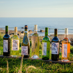 Spotlight on Sea Change wine