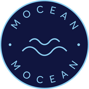 Q&A with Mocean