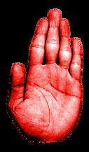映像・動画・Web制作TENOHIRA(テノヒラ)の手