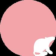 ネズミ・衛生害虫対策 沖縄サニタリー