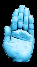 Web映像動画制作TENOHIRA(テノヒラ)の手