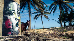 --'Dominican Republic'-Paste up.jpg