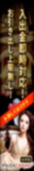 paizacasino_open_promotion-120x600.jpg