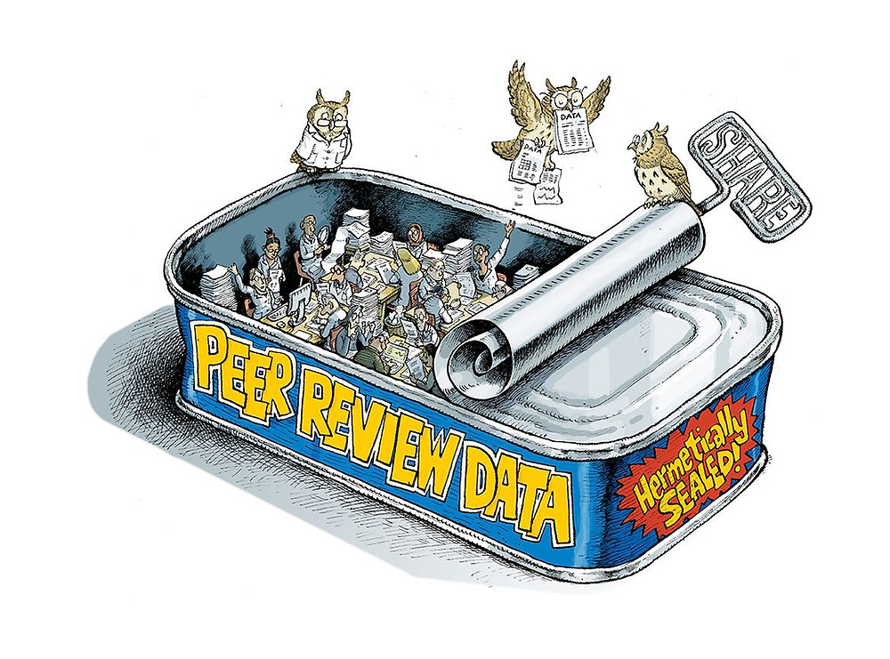 'Peer Review Data' Illustration by David Parkins, Nature
