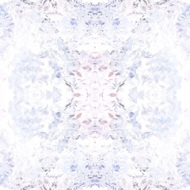Hyd_4_edited.jpg