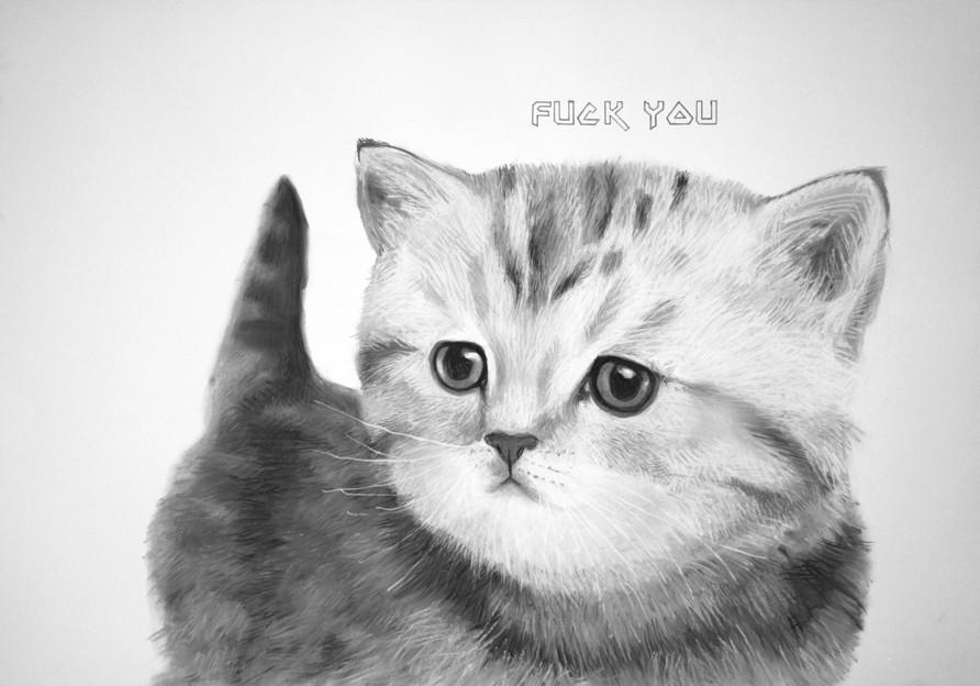 Silver Mackerel Britsh shorhair kitten