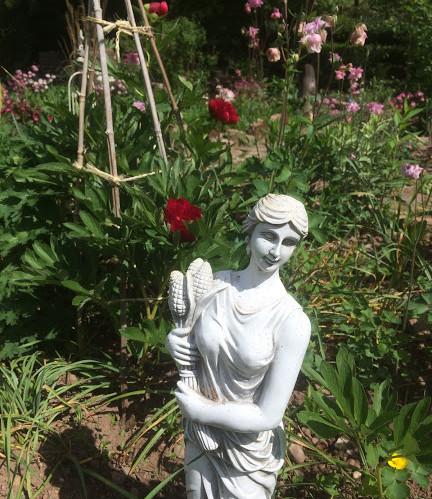 Dans le jardin zen de la Charmante