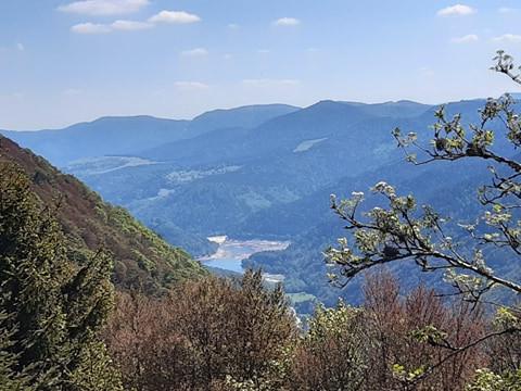 Les Hautes Vosges sommet du Rainkoft (à 45km)