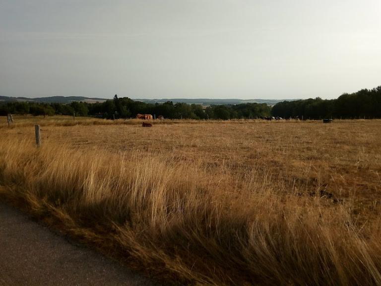 Fin d'été Neuville (à 1km)