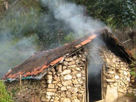 Apropiación de las cocinas limpias en el Perú