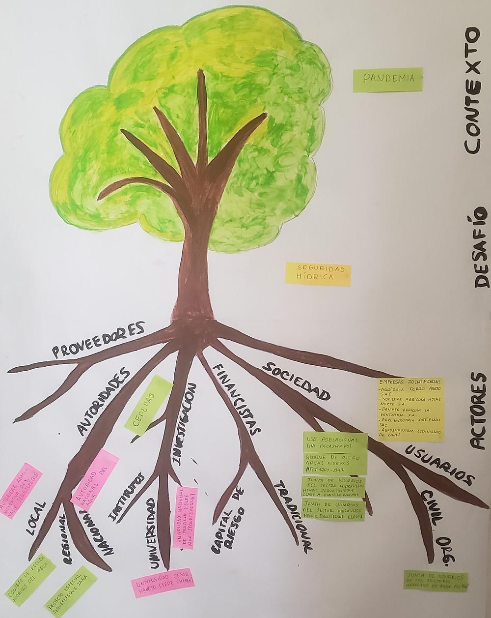 Árbol de actores en la gestión del agua del valle de Jequetepeque