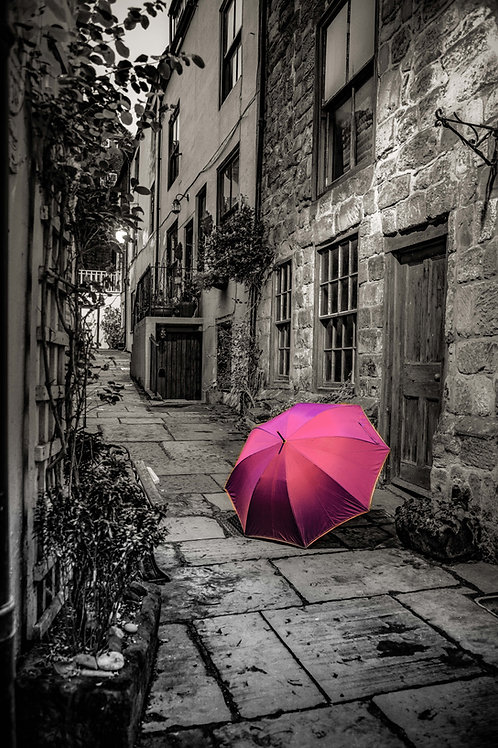 Brolly yard print