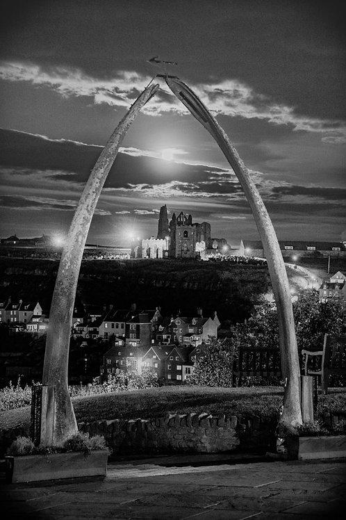 whale bone mono canvas