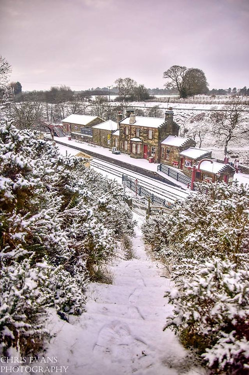 snowy goathland station print