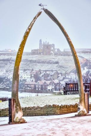 whale bones in the snow