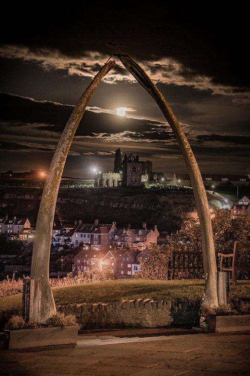 whale bones moon canvas