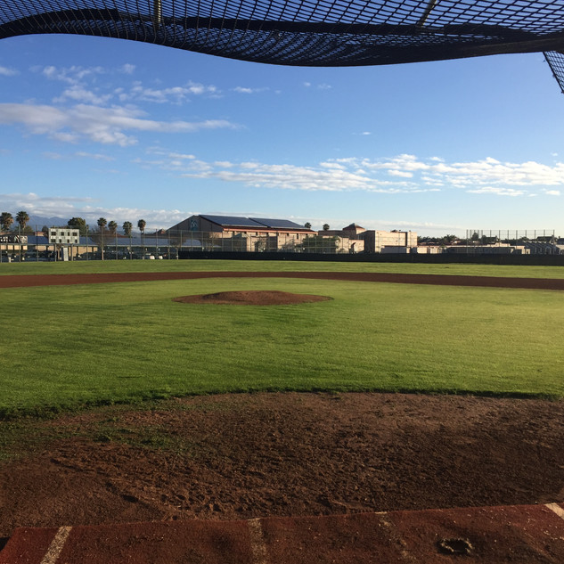 View from homeplate