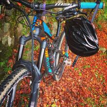 bicycle_gallery06.jpg