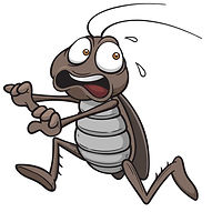 яд от блох , клопов,  тараканов, паразитов, насекомых, крыс, мышей  в одессе