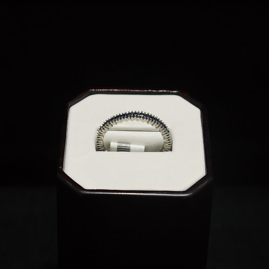 14k White Gold Eternity Band w/ Prong Set Princess Cut Sapphires