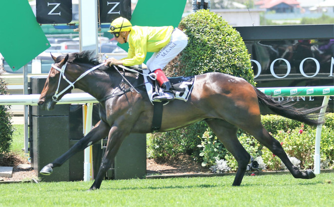 Dual runners line up in Listed races tomorrow