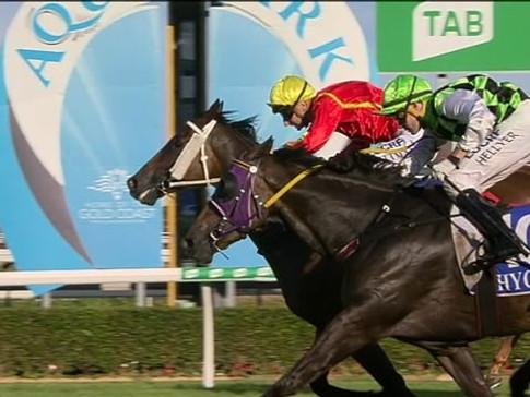 Weston wins at the Gold Coast 19 January 2019
