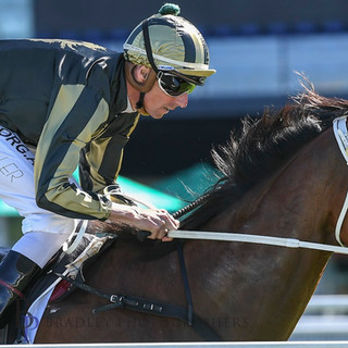 Snitz wins in Sydney with Nash in the saddle