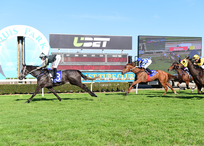 Subterranean highlights busy weekend for Viva Racing