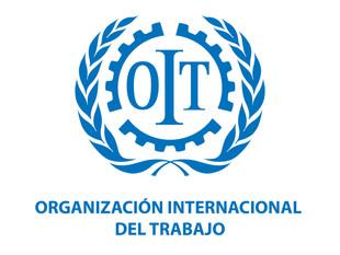 """Diálogo mundial organizado por la OIT sobre """"El futuro del trabajo que queremos"""" será este jueves y"""