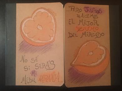 Davidlie_Poulain_Libretas_Media_Naranja.