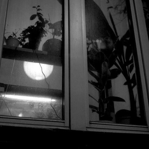 polish series 30_.jpg