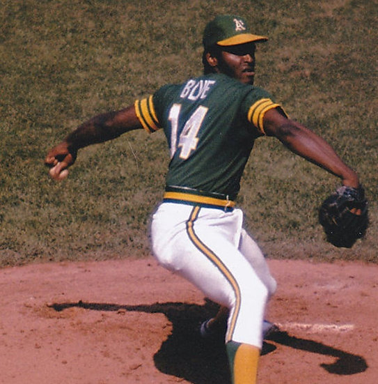 Vida Blue Inscription Mail Order