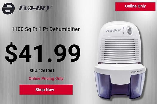 eva-dry-1100-square-foot-1-pint-dehumidifier.webp