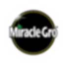 miracle-grow-ace-fix-it-hardware-garden-