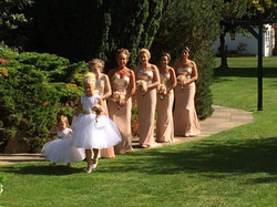Polka Bridesmaid 16- Sept 15.jpg