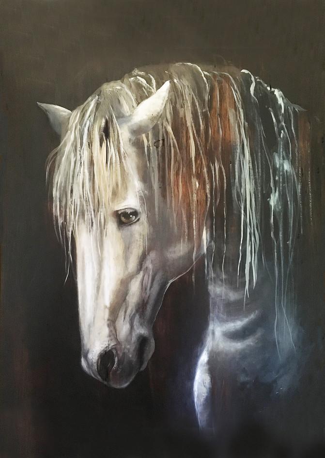 """""""White Horse"""""""