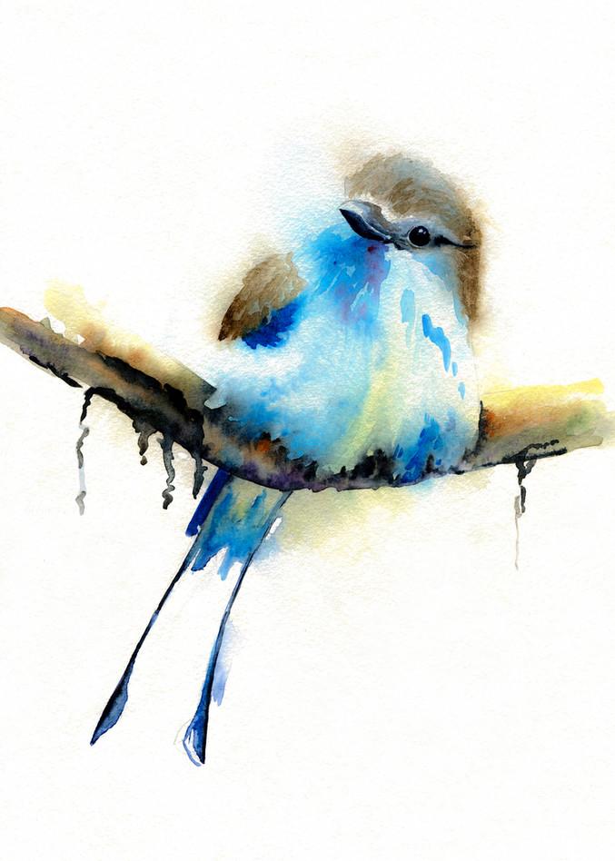 """""""European Roller Bird"""""""