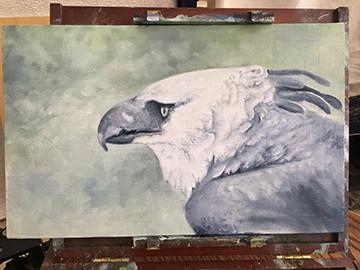 Harpy Eagle Hot off the Easel!
