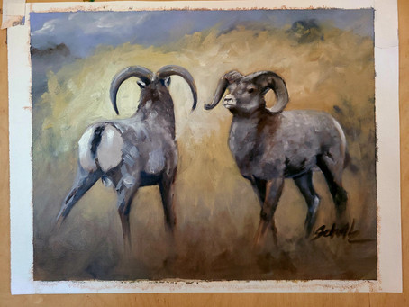 "Sierra Nevada Bighorn Sheep.  ""The Standoff """