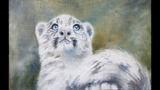 Paint a Snow Leopard in Oil