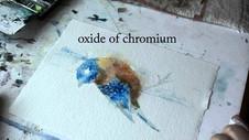 Eastern Bluebird Condensed Part 1