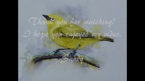 African Yellow White Eye in Watercolor