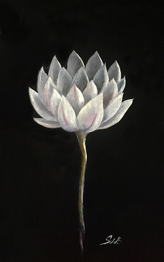 Lotus for RozieMay