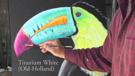 Painting A Toucan with Tom Applegate