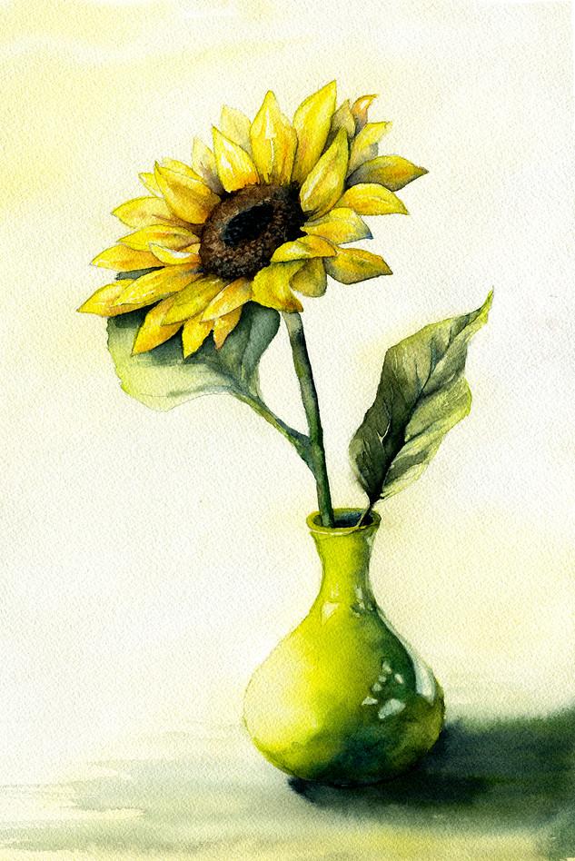 Sunflower for Grandma